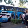Travel from Surat Thani to Koh Samui
